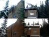 tree-on-house-2